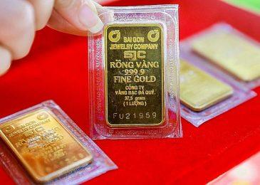 Vàng SJC là gì, là sao, như thế nào, có mấy loại, đắt hay rẻ?